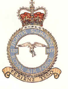 RAF 25 Squadron Association Badge
